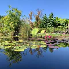 The Arboretum at Penn State | POPULAR Trips, Photos, Ratings & Practical Information