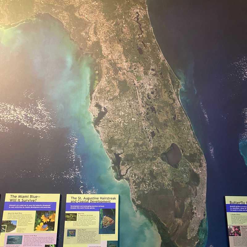 University of Florida Museum of National History