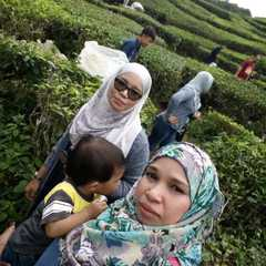 BOH Sungai Palas Tea Centre - Photos by Real Travelers, Ratings, and Other Practical Information