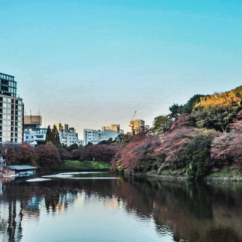 Tokyo - Hoptale's Destination Guide