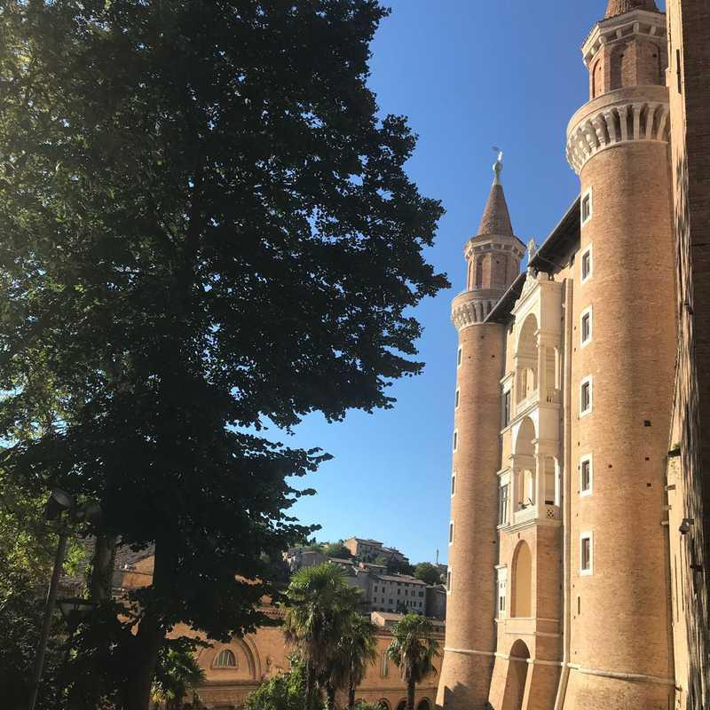 Palazzo Ducale di Urbino