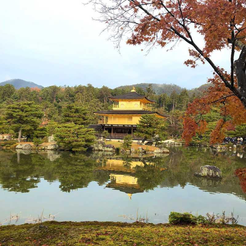 Ryoanji Temple Kori