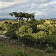 State of Rio Grande do Sul - Selected Hoptale Trips