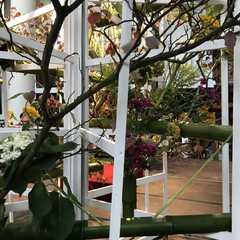 Sint-Walburgakerk   POPULAR Trips, Photos, Ratings & Practical Information
