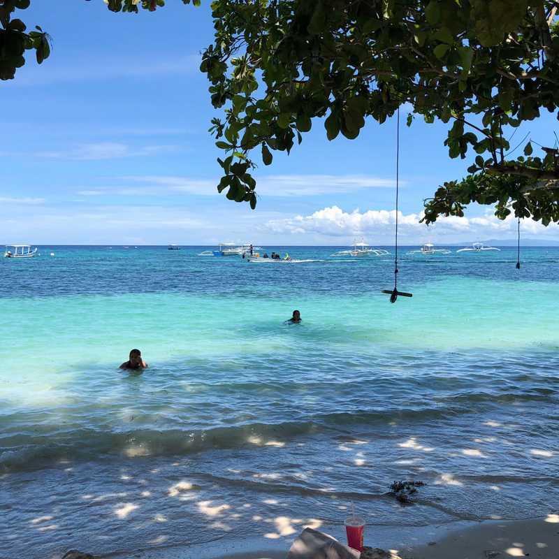 Bohol - Hoptale's Destination Guide