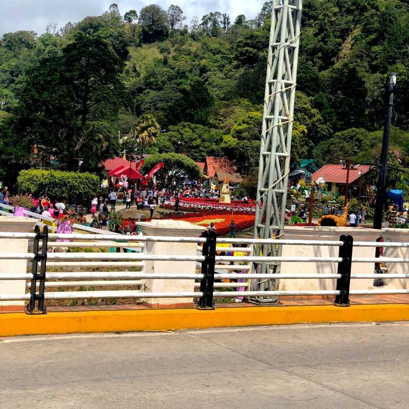 Feria de las Flores y el Café
