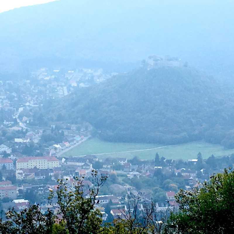 Braunsberg