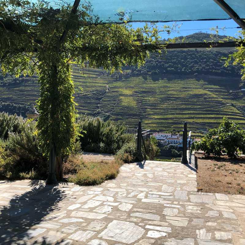 Quinta da Roêda | Croft Port