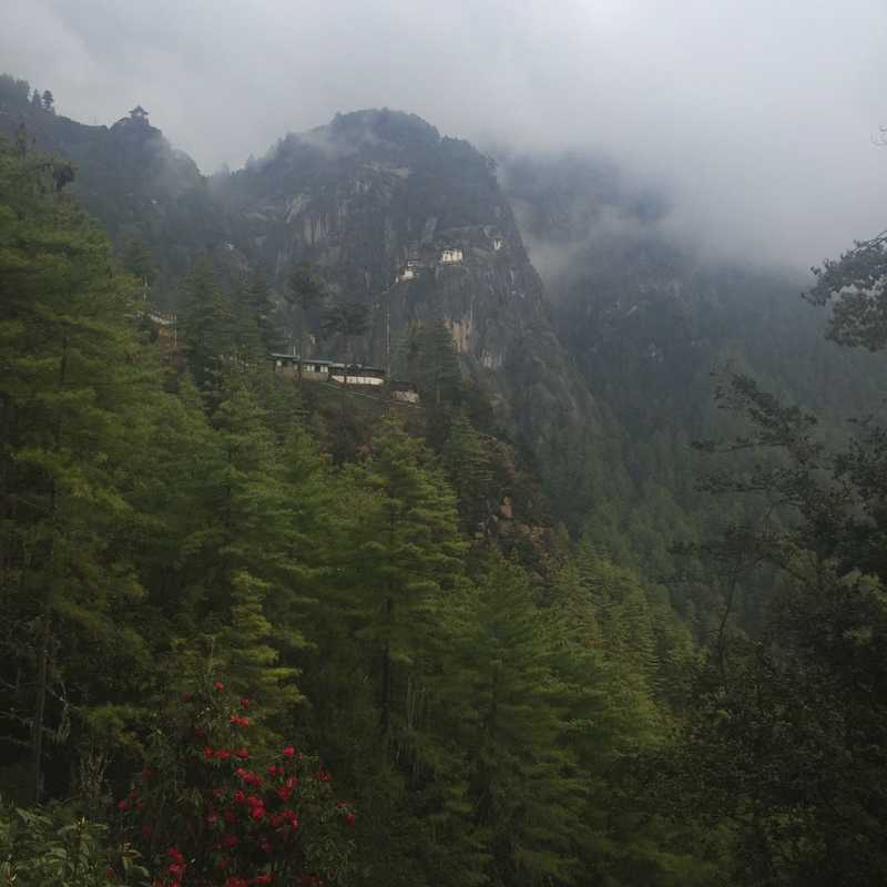 Tiger's Nest Hiking Trail