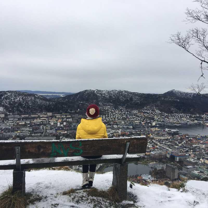 Panorama Fløyfjellet