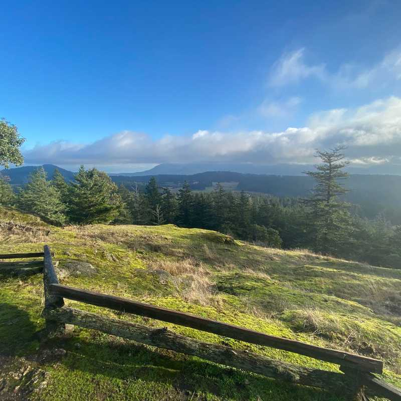Turtleback Mountain North Trailhead