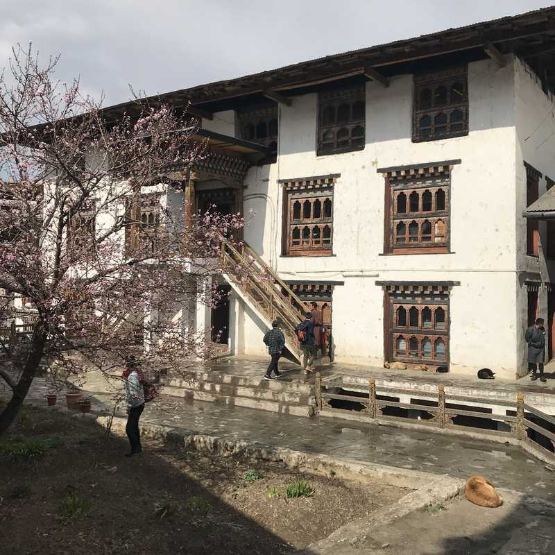 National Institute of Traditional Crafts