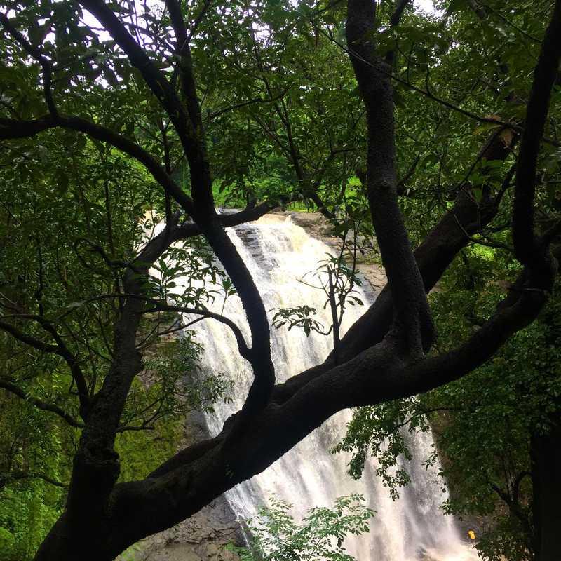 Ashoka waterfall Nashik