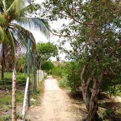 Isla Tierra Bomba - Photos by Real Travelers, Ratings, and Other Practical Information