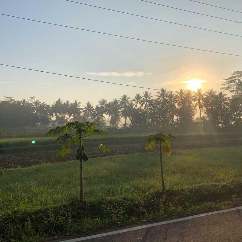 Plataran Borobudur Resort & Spa