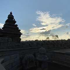 Tamil Nadu (India) | Seleted Trip Photo
