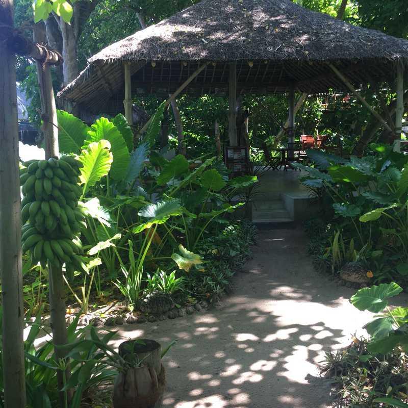 Zero Garden Restaurant