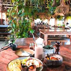 Shelter Cafe   POPULAR Trips, Photos, Ratings & Practical Information