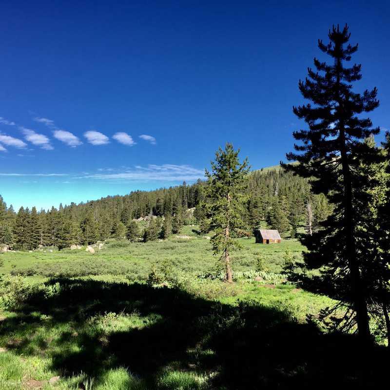 Schneider Cow Camp Road