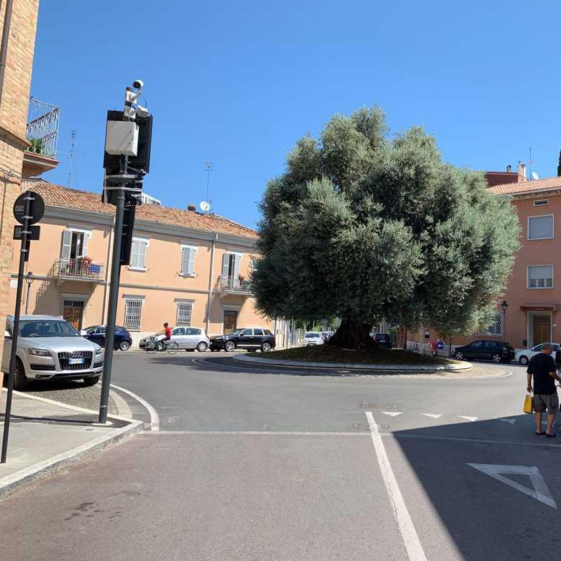 Piazzetta Plebiscito