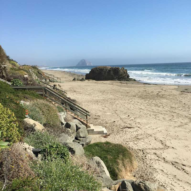 Cayucos, Los Olivos, and A Wedding Weekend | 3 days trip itinerary, map & gallery