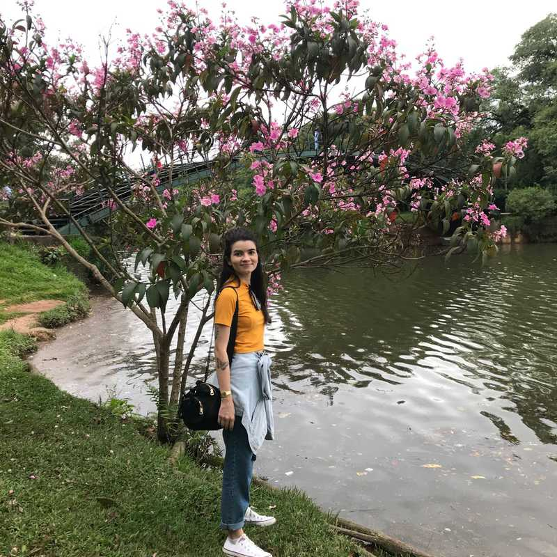Ibirapuera