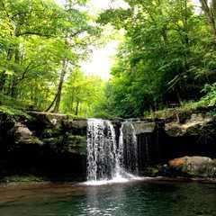 Thorp Creek Falls   POPULAR Trips, Photos, Ratings & Practical Information