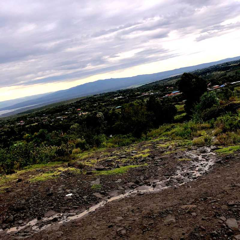 Viewpoint Naivash