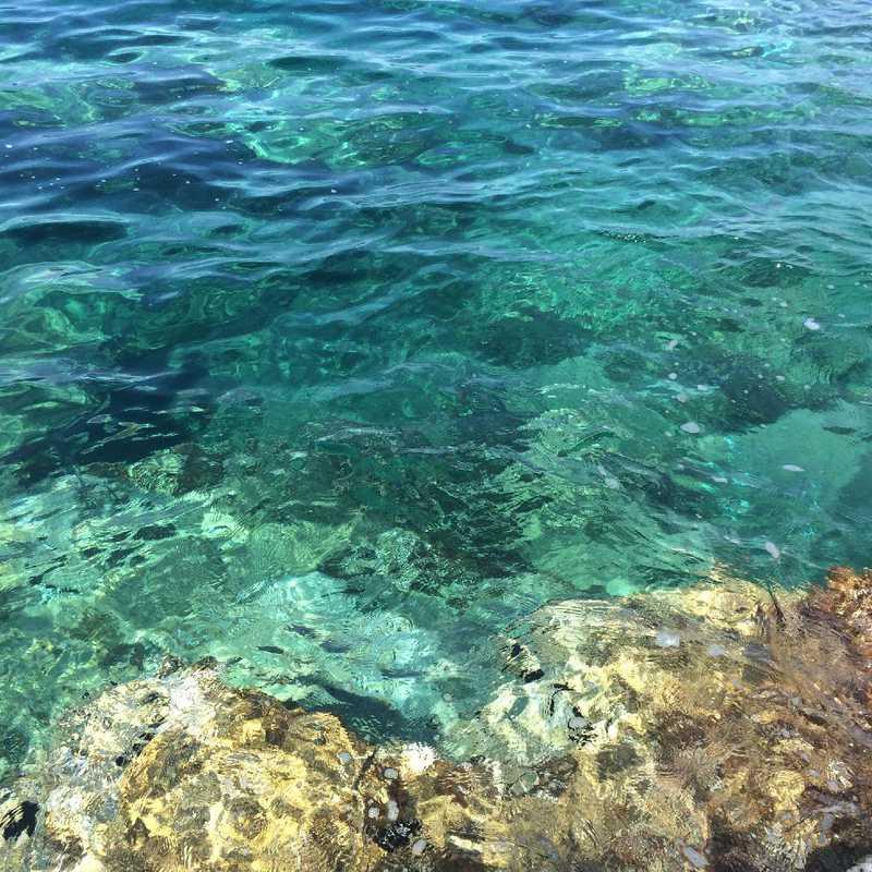 Ocean Swim at Vela Luka