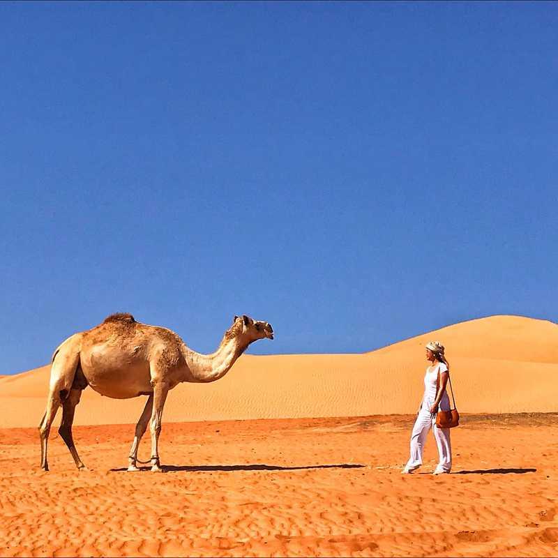 Wahiba Sand Desert in Bidiya 🇴🇲📷🐪 | 1 day trip itinerary, map & gallery