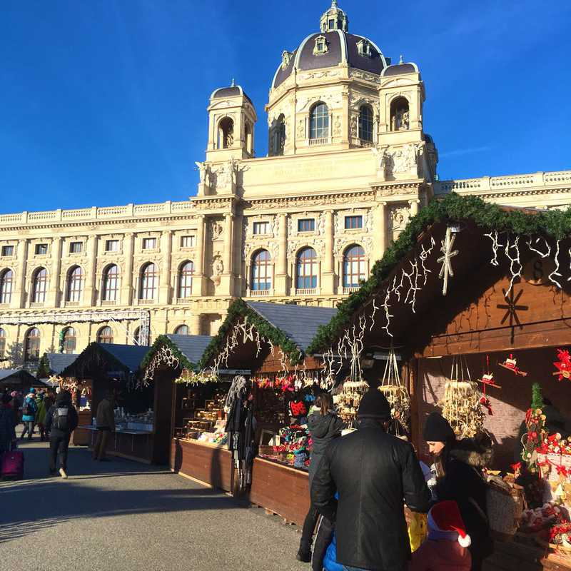 Place / Tourist Attraction: Museum of Natural History Vienna (Vienna, Austria)
