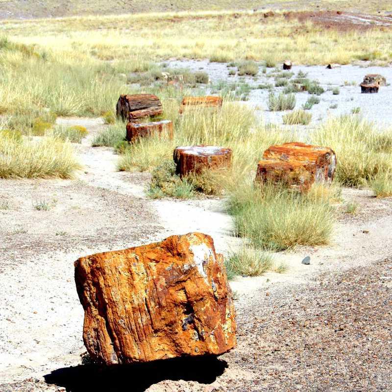 Texas - New Mexico - Arizona - California | 5 days trip itinerary, map & gallery