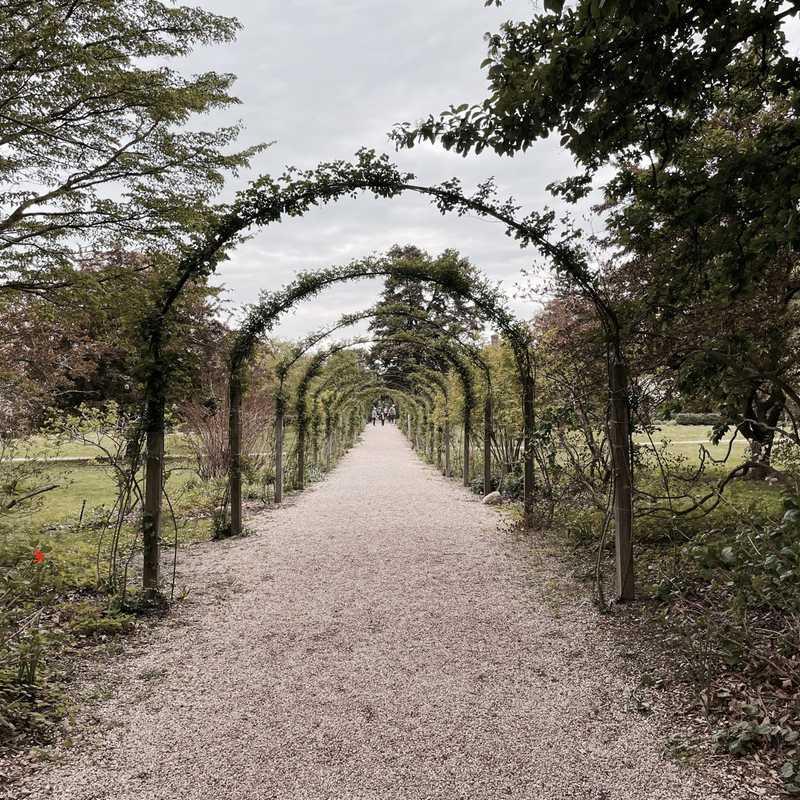 Camellia House, Planting Fields Arboretum