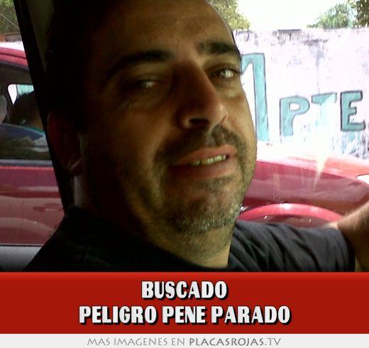 Pin Pene Parado William Levy Con El on Pinterest