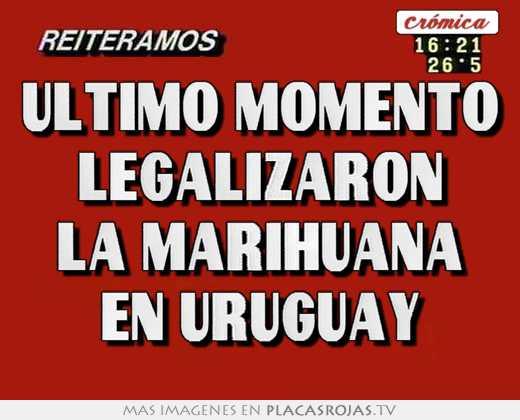 Ultimo momento legalizaron la marihuana en uruguay