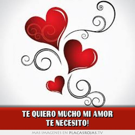 Te quiero mucho mi amor te necesito! - Placas Rojas TV