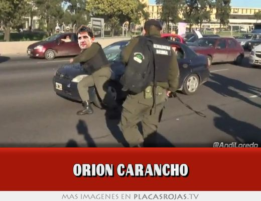 Orion carancho