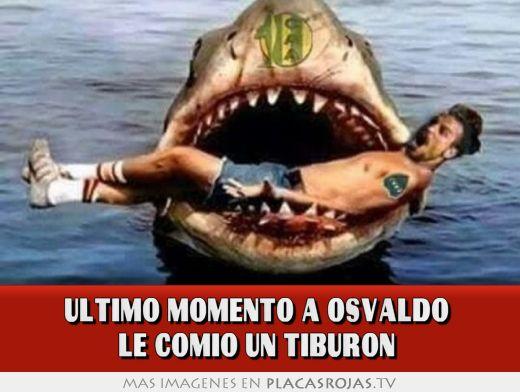 Ultimo momento a osvaldo  le comio un tiburon