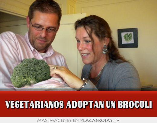 Vegetarianos adoptan un brocoli