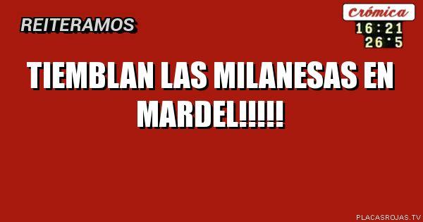 Tiemblan las milanesas en mardel!!!!!
