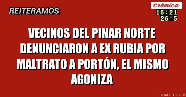 Vecinos del Pinar norte denunciaron a ex rubia por maltrato a portón, el mismo agoniza