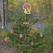 Kelowna Mission Creek Pathe Thanksgiving Tree