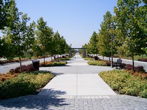 Victoria Arbors Lane