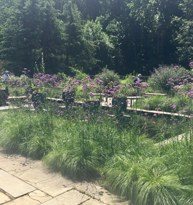Brookside Gardens in Garden Bloggers Fling 2017 by Tracy Blevins ...