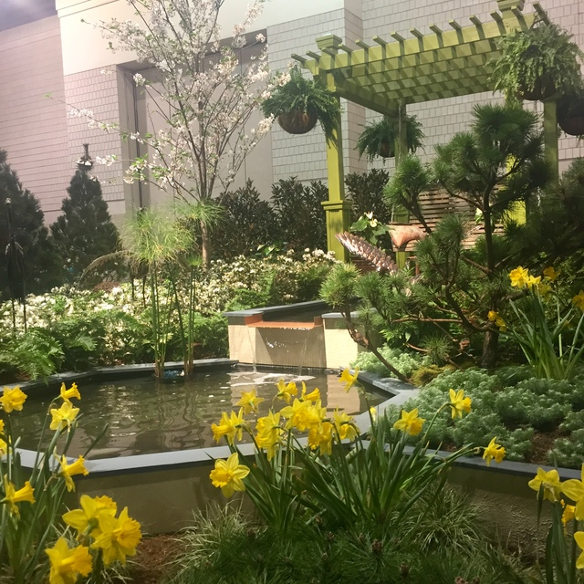 2018 Philadelphia Flower Show By Tracy Blevins