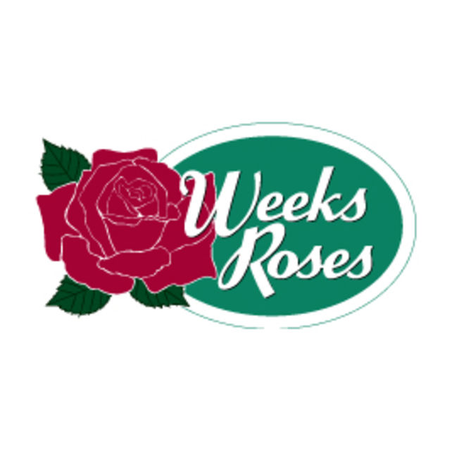 Organization Weeks Roses Plants Map