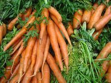 Carrots_(4700699947).jpg