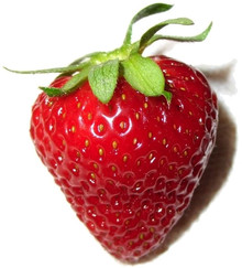 543px-PerfectStrawberry.jpg