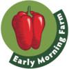 Early Morning Farm