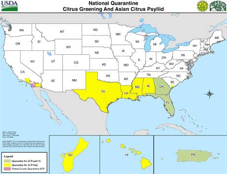 nationalquarantinemap-citrus-greening-and-asian-psyllid1.jpg